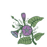 Floral hand-drawn card. Floral hand drawn vector illustration in doodle style Royalty Free Stock Photos