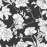 Floral hand drawn seamless pattern with flowers. Stock Images