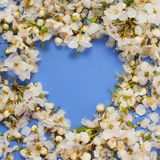 Floral heart on a blue background Stock Images