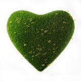 Floral Heart, 3D Heart Made of Grass and Flowers Isolated on White Background, Royalty Free Stock Photography