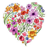 Floral Heart Illustration. Watercolour illustration of a floral heart Royalty Free Stock Images