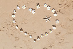 Floral heart on the sand. Heart of white frangipani flowers in the sand Royalty Free Stock Images