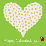 Floral heart shape Stock Photos