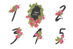 Floral hibiscus  collection numbers in vintage color. Floral  hibiscus collection numbers in vintage color. One, two, three, four, five - signs Royalty Free Stock Image