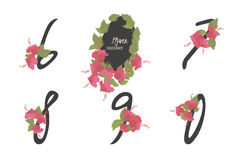 Floral  hibiscus collection numbers in vintage color. Floral hibiscus collection numbers in vintage color. Six, seven, eight, nine, zero- signs Stock Images