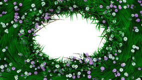 Floral holiday background border with flowers and plants Royalty Free Stock Photos