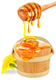 Floral honey Royalty Free Stock Image