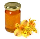 Floral honey and flowers Stock Photos