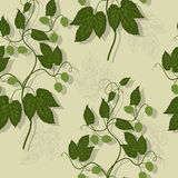 Floral hop seamless pattern Stock Photos