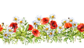 Floral horizontal border. Watercolor meadow flowers, grass, herbs. Seamless frame Royalty Free Stock Photography