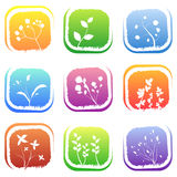 Floral icons Stock Photos
