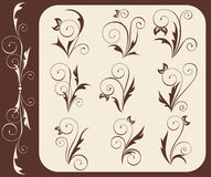 Floral icons. Retro-styled floral icons set -  illustration Stock Photos