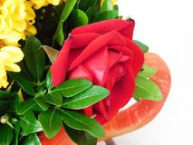 Floral illuminated gift Stock Images