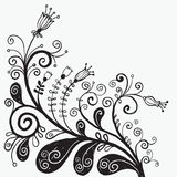 Floral illustration Stock Photo