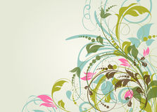 Floral illustration Royalty Free Stock Photography
