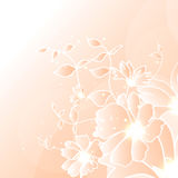 Floral illustration background. Abstract colorful background with flowers. Floral illustration Stock Image