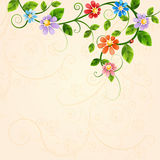 Floral illustration with colorful flowers. Stock Photos