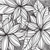 Floral illustration. Few flowers on black background Stock Photos