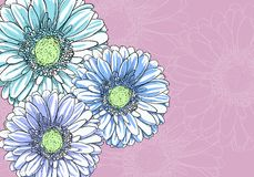 Floral illustration Stock Photography
