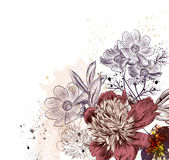 Floral illustration with peony and cosmos flowers Stock Photo
