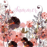Floral illustration in pink colors with field summer flowers. Beautiful floral illustration in pink colors with field summer flowers Stock Photos