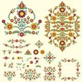 Floral  illustration set Royalty Free Stock Image