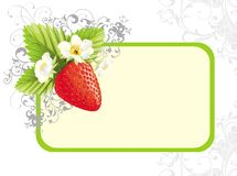 Floral illustration with strawberry and flowers Royalty Free Stock Image