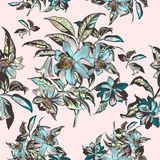 Floral illustration with  vector hand drawn flowers in vintage Vi Royalty Free Stock Images