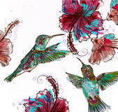 Floral illustration with vector hibiscus flowers and hummingbird. S in watercolor colorful spots. Watercolor style paintings Stock Photo