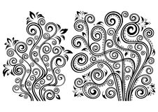 Floral illustrations. Set of two vector floral illustrations Royalty Free Stock Photos