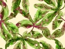Floral intrépido stock de ilustración