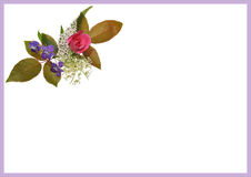 Floral invitation A3 A5 Royalty Free Stock Image