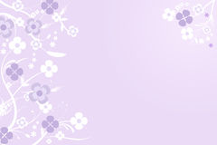 Floral invitation background - vector Stock Photography