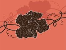 Floral invitation Stock Photo