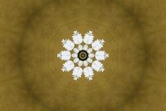Floral kaleidoscope Royalty Free Stock Photo