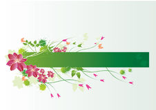 Floral label. Floral spring label or banner with flowers,buds,and butterflies vector illustration