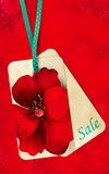Floral label sale. On red background Stock Photography