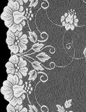 Floral lace background Stock Photo