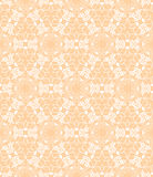 Floral lace pattern Stock Photography