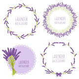 Floral lavender design in circle Royalty Free Stock Image