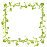 Floral leaf classic frame Royalty Free Stock Photos