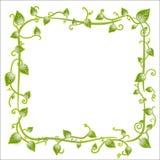 Floral leaf classic frame. Vector illustration of a vintage floral leaf frame with modern curls and vines royalty free illustration
