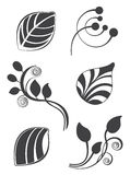 Floral and leaf  elements in various styles for ornate and decoration Stock Image