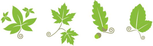 Floral leaves. Vectored illustration of floral leaves. EPS and JPEG versions available Stock Photo