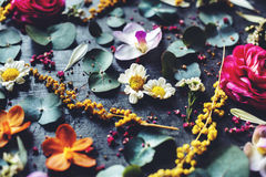 Floral leaves romance decoration freshness lush Stock Photos