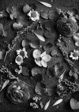 Floral leaves romance decoration freshness lush Stock Image