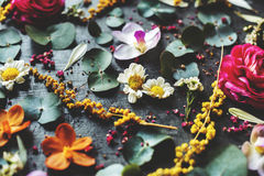 Floral leaves romance decoration freshness lush Royalty Free Stock Images