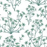 Floral leaves seamless pattern. Wild nature background. Flourish Royalty Free Stock Photo