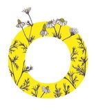 Yellow letter O with camomile flowers. Floral letter design with hand-drawn camomile flowers. For more letters in this style check my portfolio Royalty Free Stock Photo