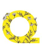 Yellow letter Q with camomile flowers. Floral letter design with hand-drawn camomile flowers. For more letters in this style check my portfolio Royalty Free Stock Image